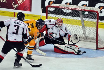 Les Huskies disposent de Cataractes tenaces